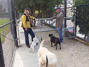 Neighbors chat at the recently installed gates