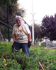 Joan Lionberger Ladybug Gardener